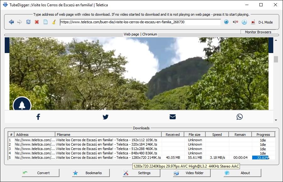 TubeDigger - How to download online videos